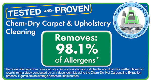 upholstery cleaning removes allergens and bacteria