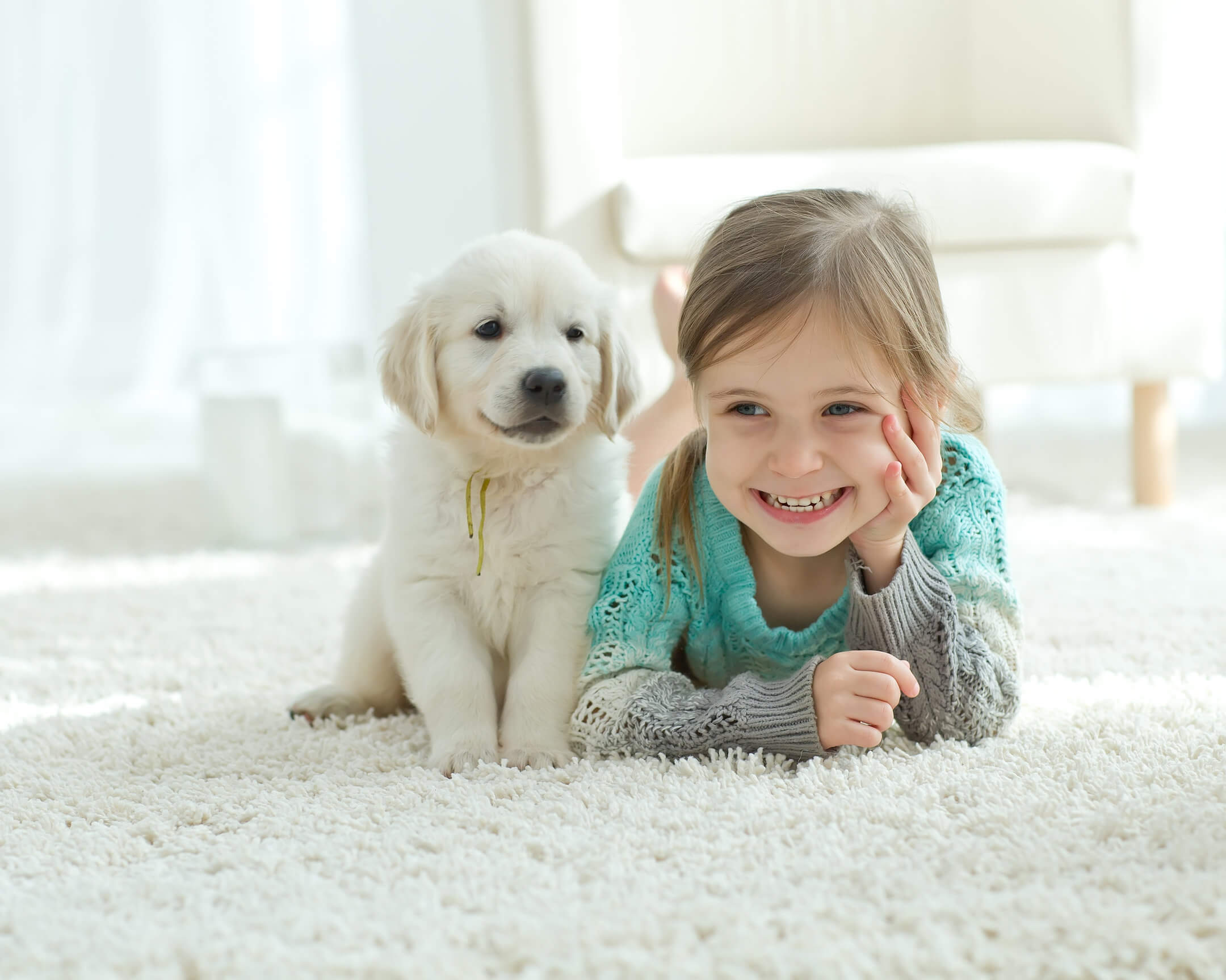 pet urine removal treatment upland