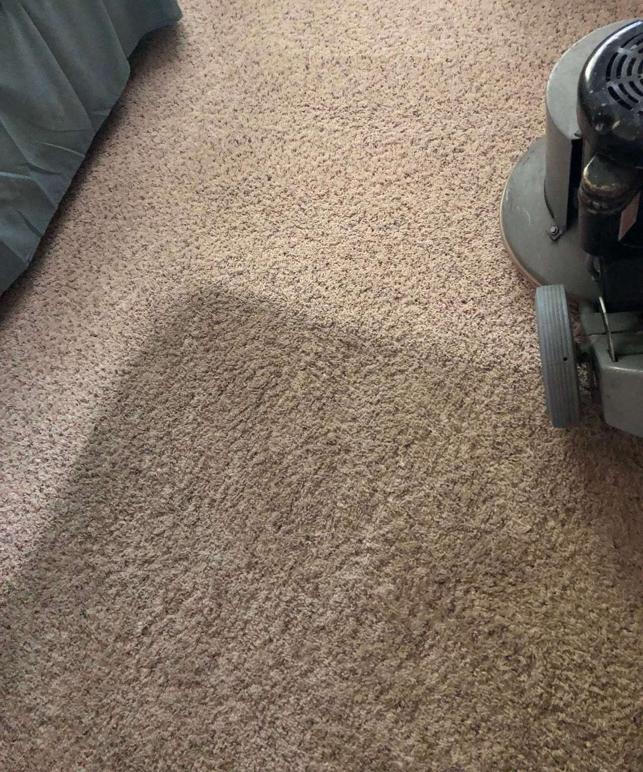 before and after carpet cleaning in eastvale ca