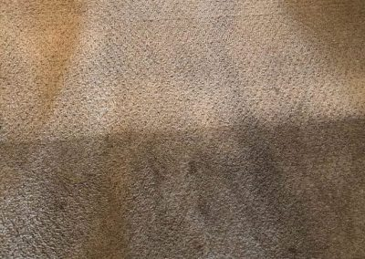 before and after carpet cleaning in rancho cucamonga